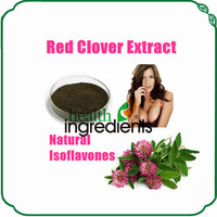 Free Sample Natural Isoflavones 8% Red Clover Extract