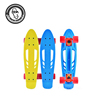 22inch mini Fish skateboard with high quality truck