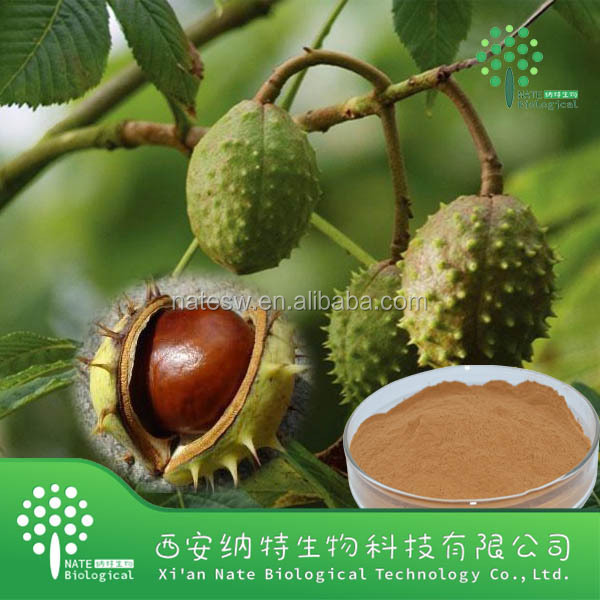 Best Selling Horse Chestnut Extract Powder Escin 40%