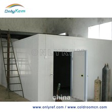 chicken meat restaurant freezer room milk cold storage cool room