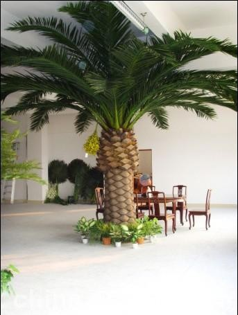 the large leaf evergreen leaf plants artificial date palm trees/fake mini palm trees/