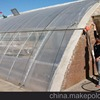 Made In China Agricultural Greenhouse Used