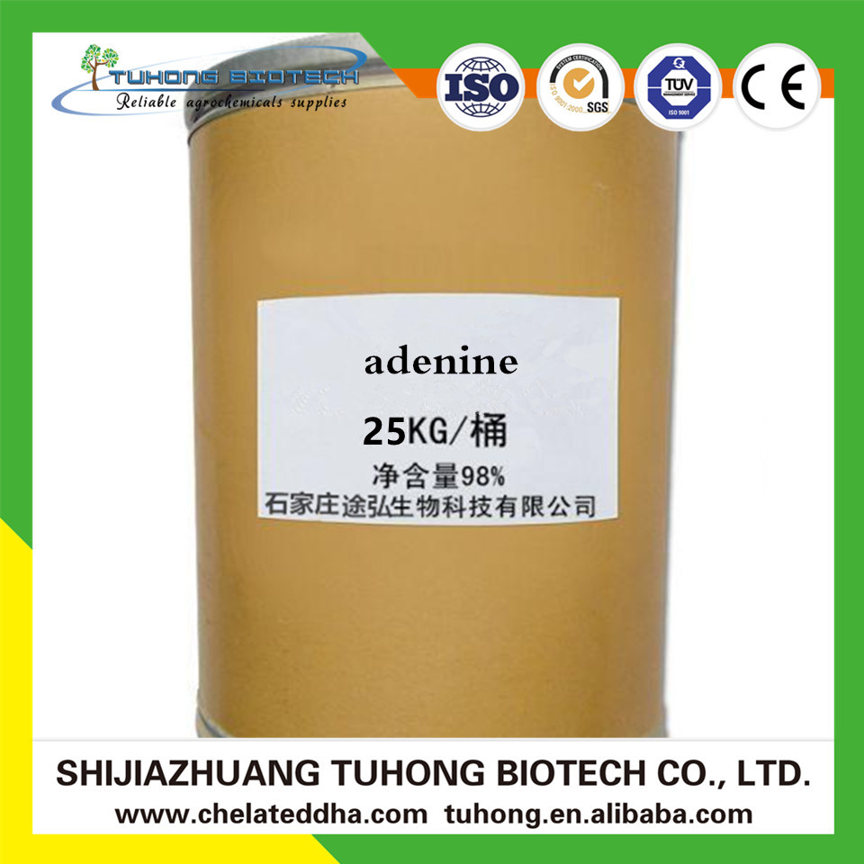 Professional Suppplier Vitamin B4 Adenine Manufacturers 99%TC