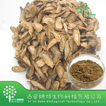Factory supply 100% Natural Burdock root extract