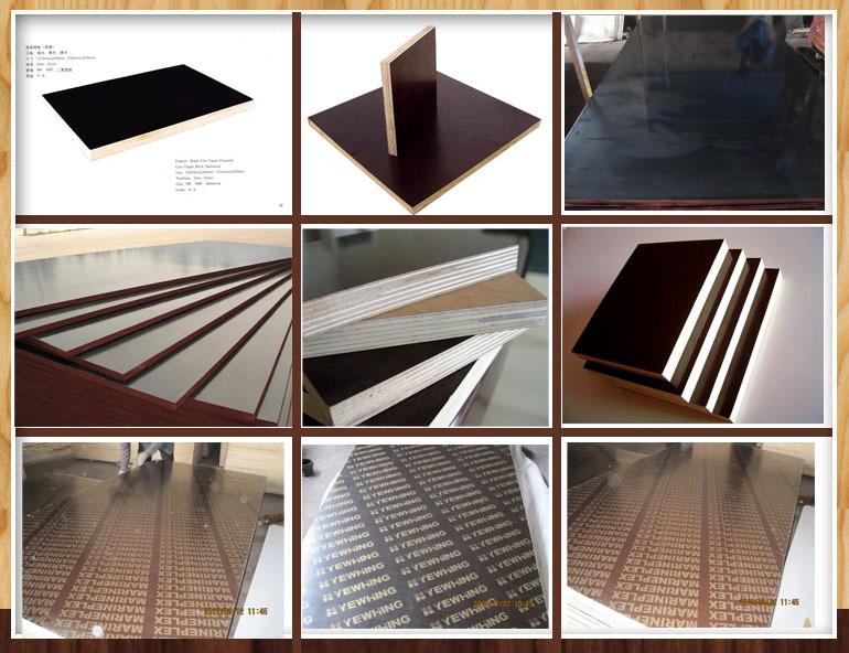 Medium Density Overlay Panel ~ Quot x mdo medium density overlaid plywood overlay