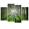 Wholesale Custom Canvas Printing Forest Picture Canvas Prints Nature Scenery Artistic Canvas Artwork Home and Office Decor 4 Pcs