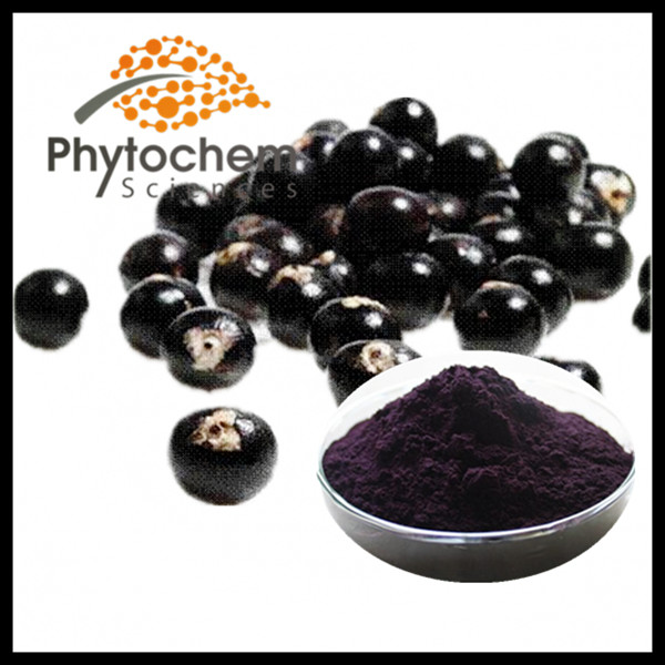 High quality anti-aging Euterpe badiocarpa acai berry extract powder 4:1/10:1/20:1 anthocyanidin
