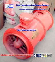 combustion air fan blower