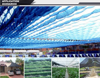 100% Virgin HDPE Agricultural Woven and Knitted Green Sun Shade Net for Greenhouse