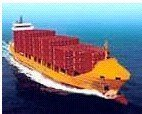 high quality sea shipping service in China