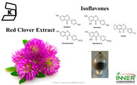 Red Clover Extract 8%-60% Isoflavones