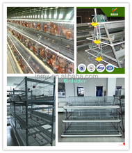 chicken egg cage poultry farm equipment