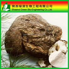 high quality Poria cocos powder/fuling/tuckahoe/Poria/Indian Buead powder