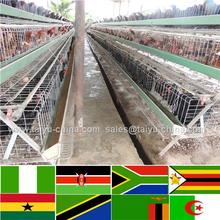 Trade assurance NO.1 Factory and exporter since 1996 free range chicken farm pictures