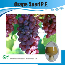Grape seed P.E.,Vitis vinifera L.,grapestone extract