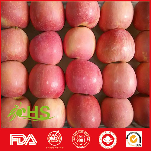 Fuji apples wholesale fruit best prices