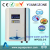 100-240V home vegetable washing machine with ozone generator