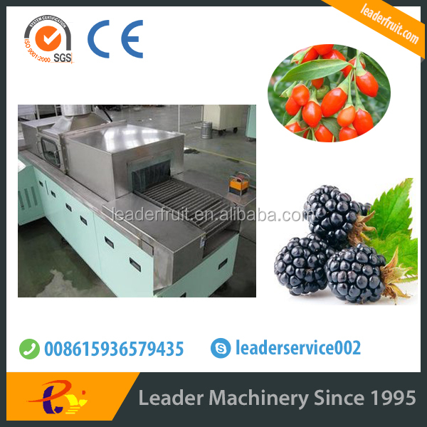 Leader stainless steel high pressure spray fruits washer