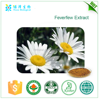 High Quality Feverfew extract 0.8% Parthenolide