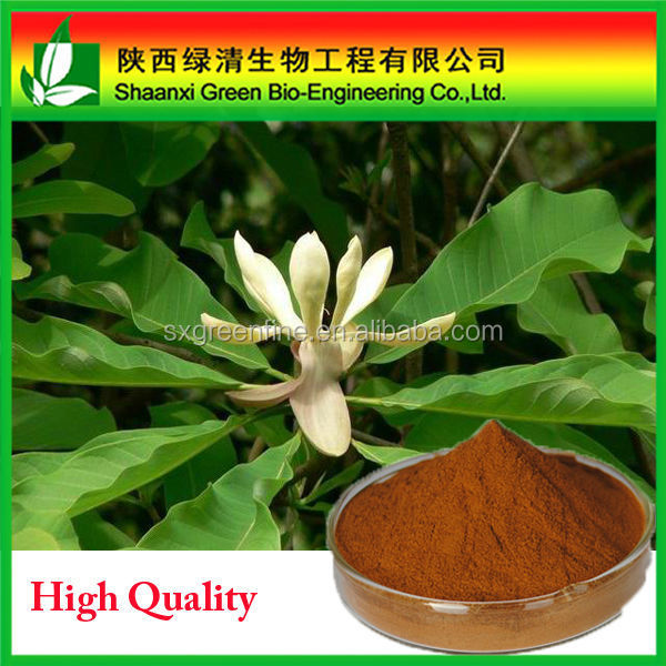 Wholesale price High quality Black Cohosh Herb Extract Triterpenoid Saponins 2.5%