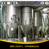 5T 30T Large Brewery Equipment Beer