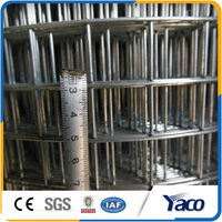 cheap galvanized welded wire mesh for bird cage , rabbit cage, animal cage