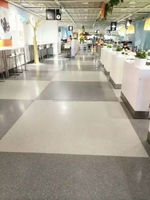 Homogeneous Vinyl Floor for Stores or Retails