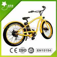 Land Cruiser 36V 250W electric bike engine for snow/beach riding