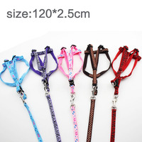 Dog chest back traction rope traction with a dog rope P chain dog dog chain dog dog dog pet dog