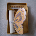 Colorful Elegant Customized Butterfly Roll Wedding Invitations with Box