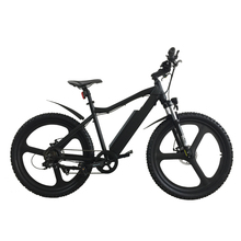 adults bicycle electric mountain bike with mag wheels