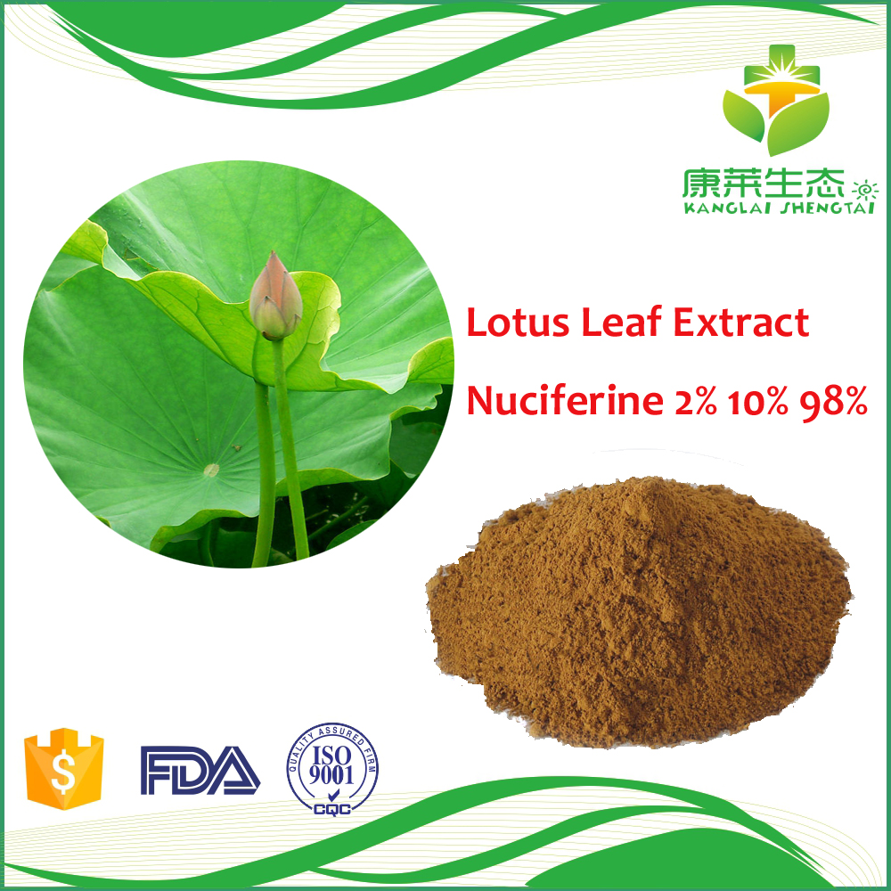 Best Price Top Quality Pure Natural Lotus Leaf Extract