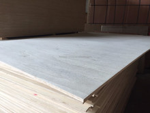 E0 bleach poplar veneer commercial plywood with best price