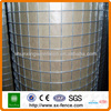 High quality electro galvanized welded wire mesh rolls\welded galvanized wire mesh fencing(professional manufacturer)