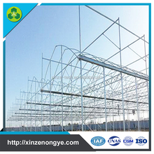 2017 new industrial multi span polythene greenhouse