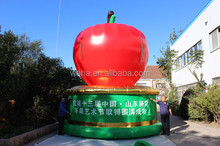 giant inflatable apple advertising red big apple for promotion