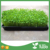 Free Sample 20*10 Inch Hydroponics Sprouts Vegetable Growing Trays For Sprouts Plants