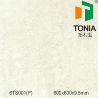 TONIA 001 Polished Full Body Porcelain Tiles Homogeneous Floor Tiles