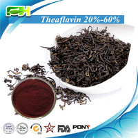 Natural Black Tea Extract 20%-60% Theaflavin