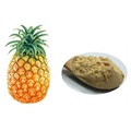 Favorable price Pineapple extract powder Bromelain enzyme 1200gdu/g