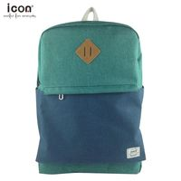 Purple and blue 15.5L oem polyester hot style wholesale school backpack