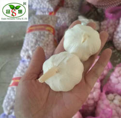 (HOT) Fresh white garlic specification more than 5 cm/GARLIC