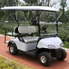 golf cart with rain cover
