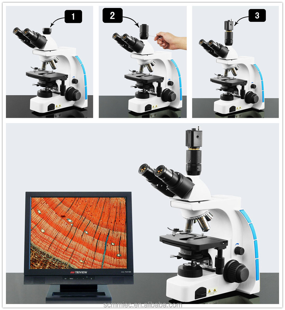 SC-203 Cheap price infinity trinocular biological microscope