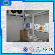Competitive price First Grade medical cold room/cold storage