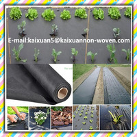 [FACTORY ] Hydrophilic black weed cloth/PP fabric weed barrier cover fleece/garden ground cover cloth