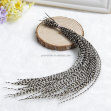2016 New Arrival hot selling wholesale feathers