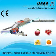 Demand Exceeding Supply Lemon Washing And Sorting Machine