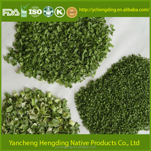 2017 Fresh Chinese dried Chive / Spring onion for sale garnish for many savory foods