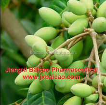 factory wholesale extra virgin olive oil in bulk from alibaba supplier